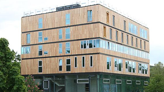 Robinienholz Fassade.